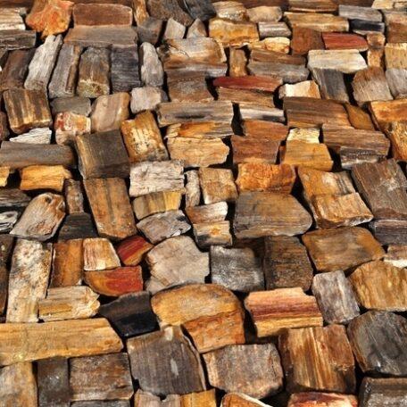 InduStone mozaika kamienna FOSIL WOOD STONE skamieniałe drewno 30 x 30 (1)