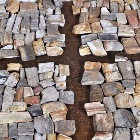 InduStone mozaika kamienna FOSIL WOOD STONE skamieniałe drewno 30 x 30 (4)